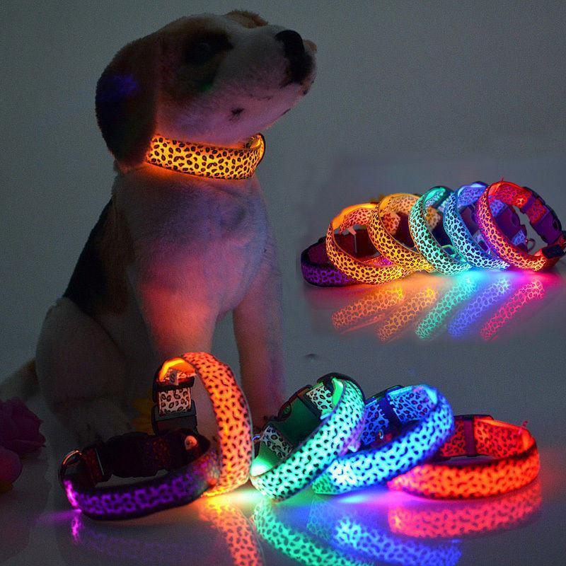 LED GLOW DOG COLLAR - OFFER - Wolrdiscounts