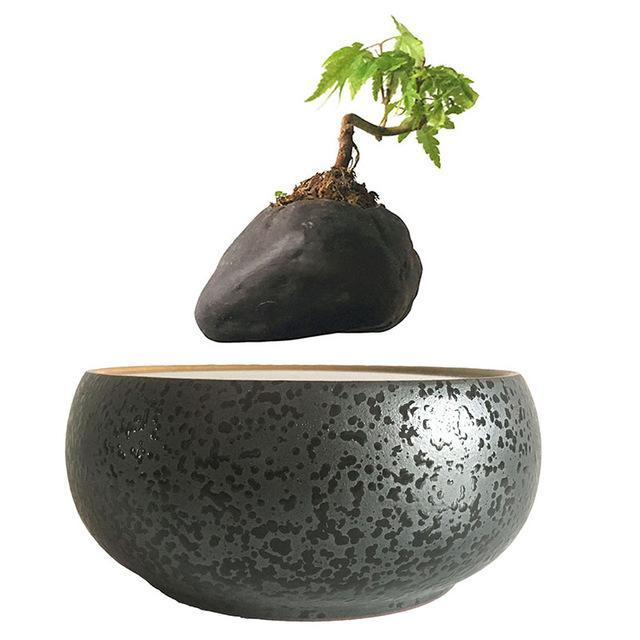 Magnetic Levitation Air Floating Bonsai Plant pot - Wolrdiscounts