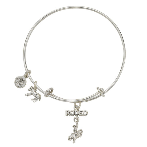 Linked Rodeo Bull Charm Bangle Bracelet - SamandNan