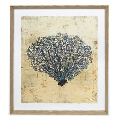 Sarah Atkinson, Sea Fan
