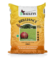 Brilliance Granulated 20kg