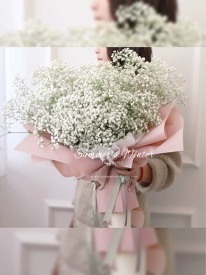 Happiness [ BABY'S BREATH ]