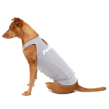 Load image into Gallery viewer, ProDogg Anti-Anxiety Compression Shirt - Large to 2XL 159101B