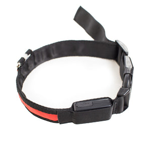 PRODOGG™ LED COLLAR, USB RECHARGEABLE 195203