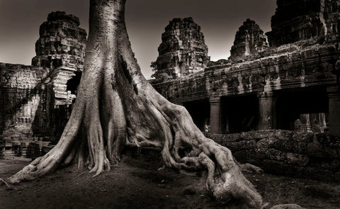 Willy Sinn - Ta Phrom