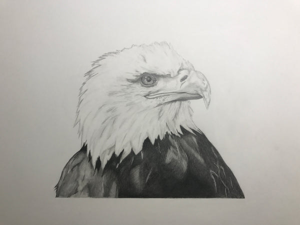 Ulli Strigl - Eagle