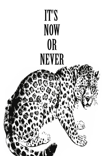 It's now or never Poster Kunstdruck - Typografie Illustration, KUNST-ONLINE Wandbild