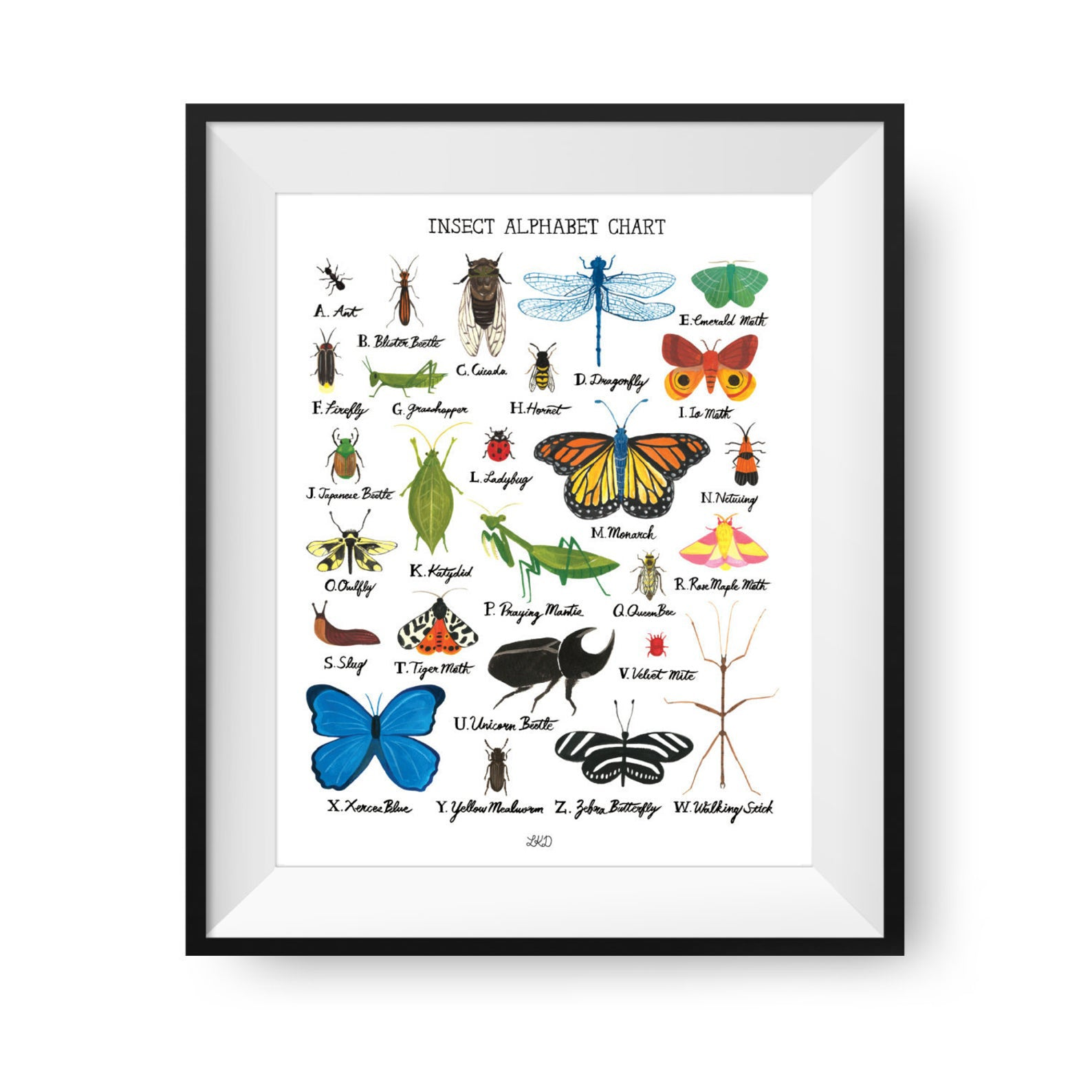 Insect Alphabet Print