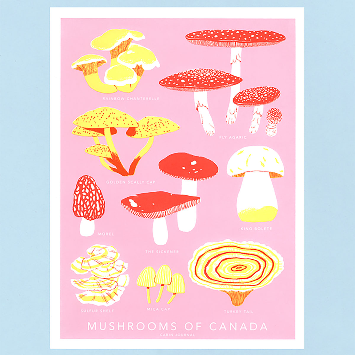 Mushrooms Of Canada Print