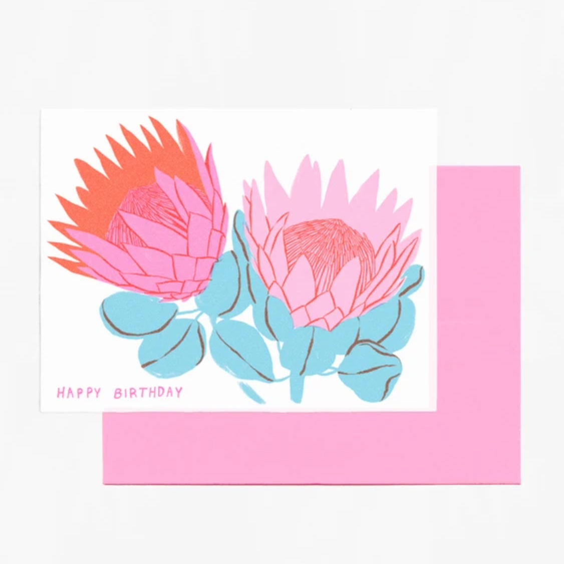 Protea Birthday Card