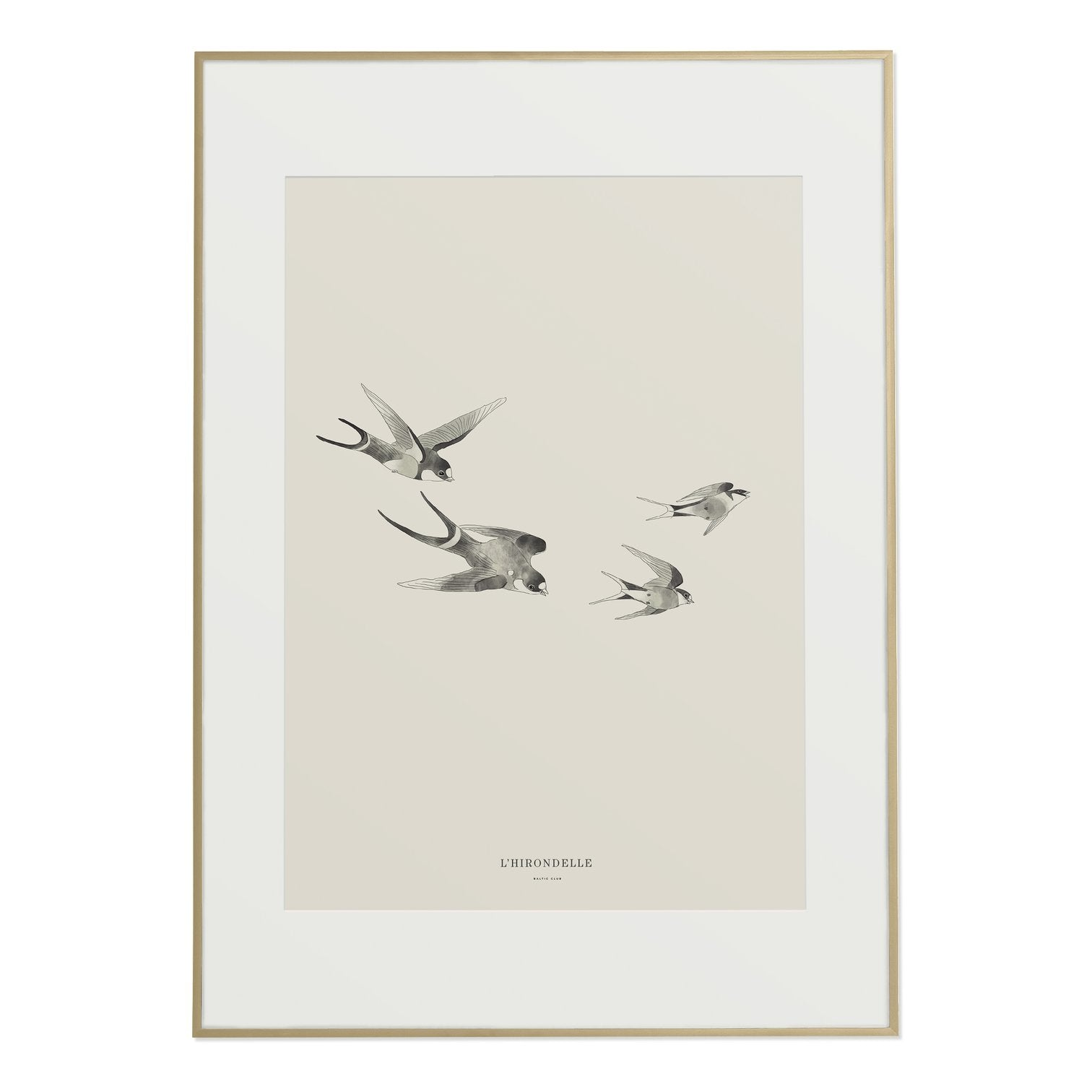 Swallows Print