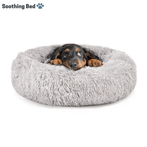Copy of Soothing Bed - Paw Pawchi