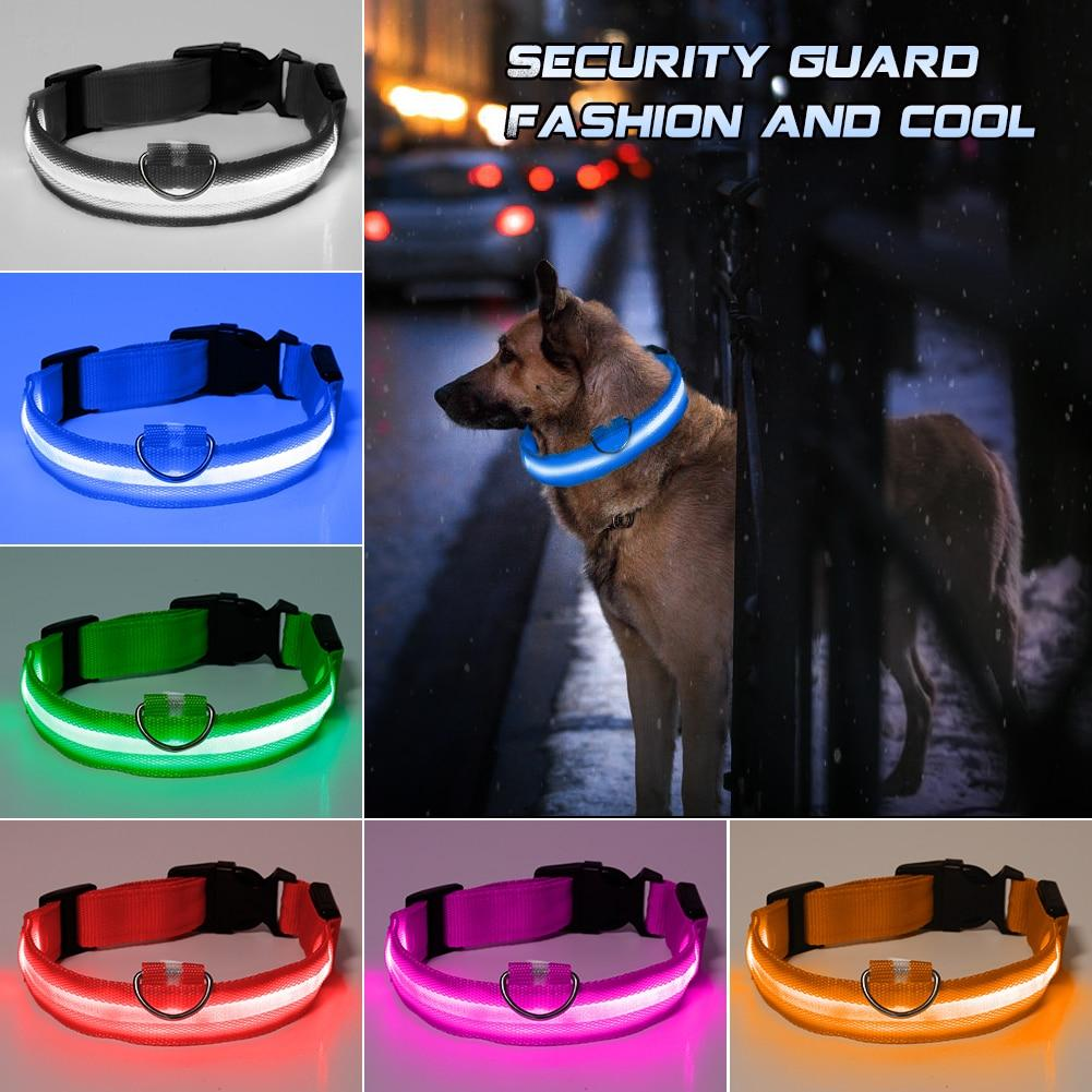 LED Light Up Collar - Paw Pawchi