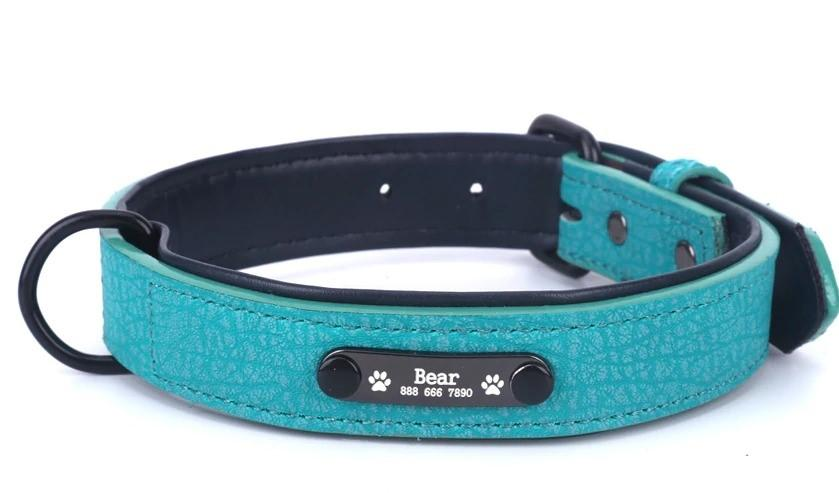 Pawpawchi™  Personalized Leather Dog Collar With Name ID Tag
