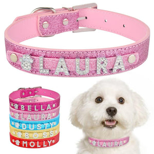 Personalized Leather Dog Collar - Paw Pawchi