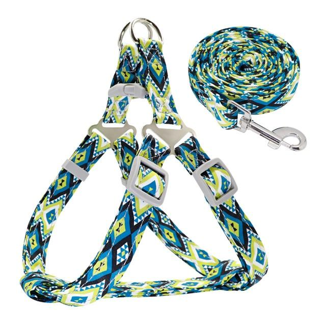Printed Nylon Dog Harness - Paw Pawchi