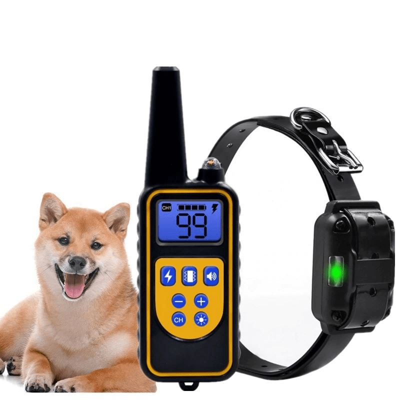 waterproof remote Dog Training Collar - Paw Pawchi