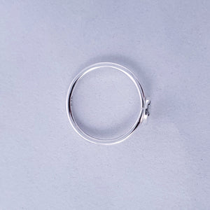 Top view of silver Maine ring