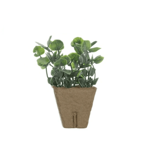 products/faux-plant-in-a-paper-pot-various-types-500851.png