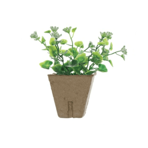 Faux Plant In a Paper Pot (Various Types) - Lady of the Lake