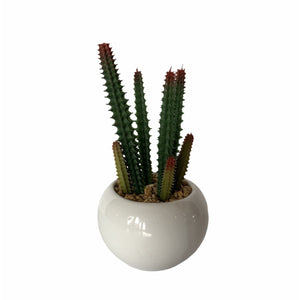 Faux Succulent in White Pot - Lady of the Lake