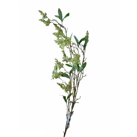 Foliage Spray with Tiny Green Flowers - Lady of the Lake