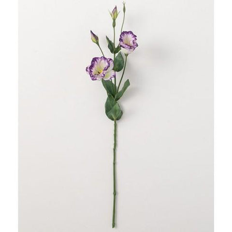Lisianthus Stem - Lady of the Lake