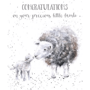 'Little Lamb' New Baby Greeting Card with Lamb Illustrations - Lady of the Lake