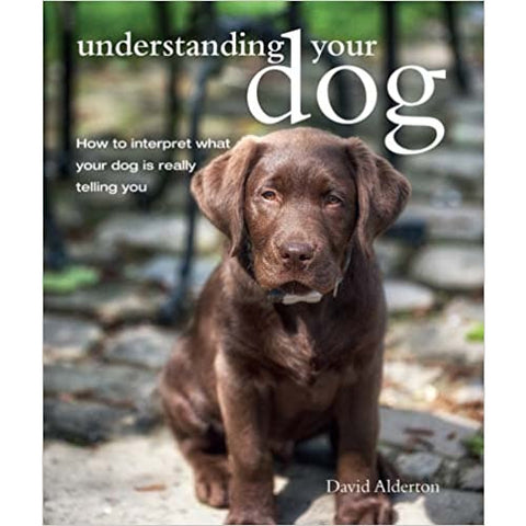 Understanding Your Dog - Lady of the Lake