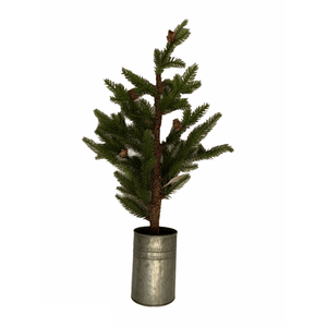 Woodsy Spruce Tree In Galvanized Pot - Lady of the Lake