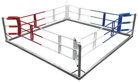 TOP TEN Boxing Ring
