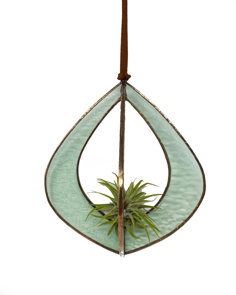 Hanging Air Plant Pod (wide)