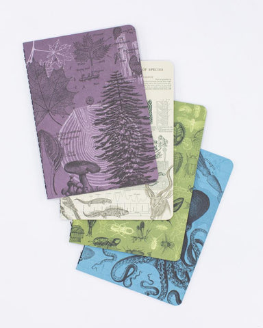 Natural Science Pocket Notebook 4-pack