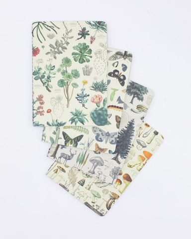 Nature Pocket Notebook 4-pack