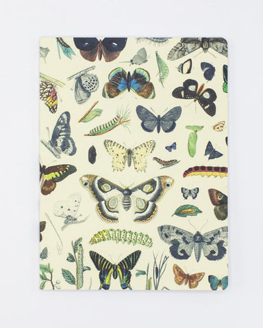 Butterflies Softcover Notebook - Dot Grid