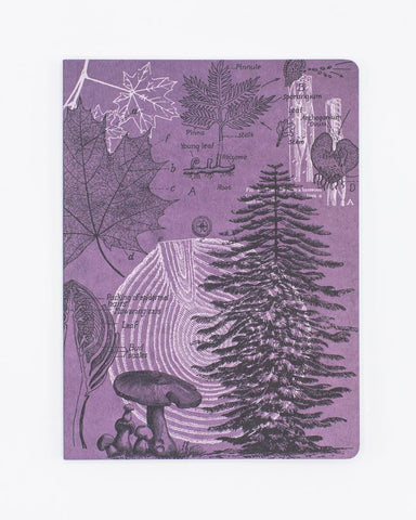 Forest at Dusk Softcover Notebook - Lined
