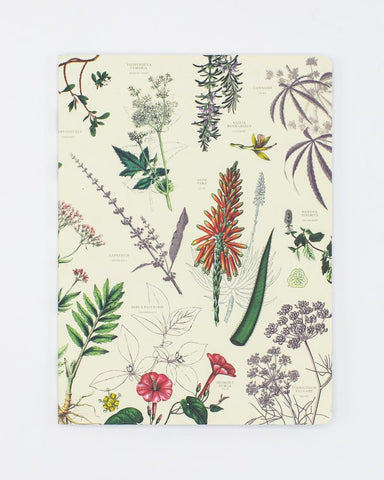 Medicinal Botany Softcover Notebook - Dot Grid