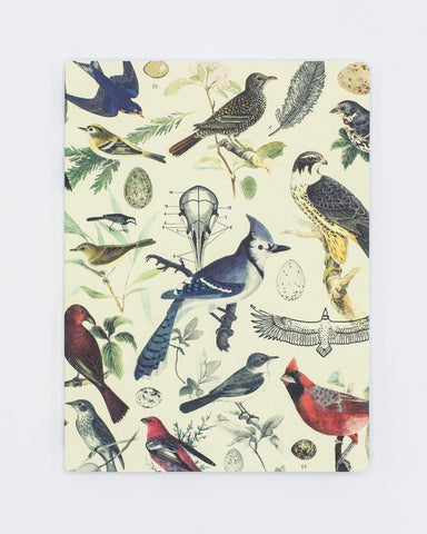 Ornithology: Birds Softcover Notebook - Dot Grid