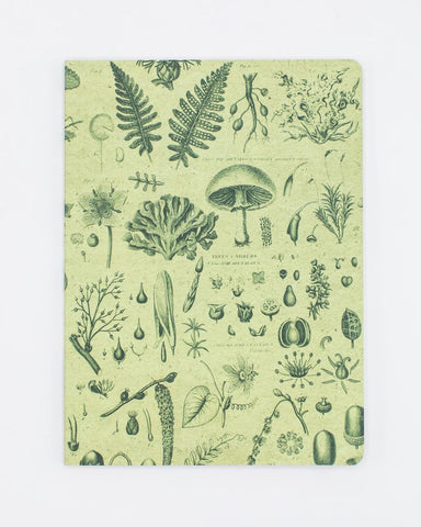 Plants & Fungi Softcover Notebook - Dot Grid