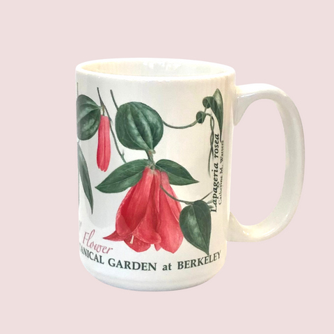 Chilean Bellflower Mug