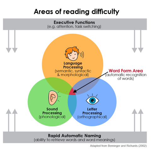 Areas of reading difficulty