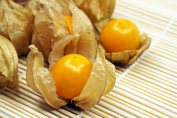 Incabessen (Physalis)