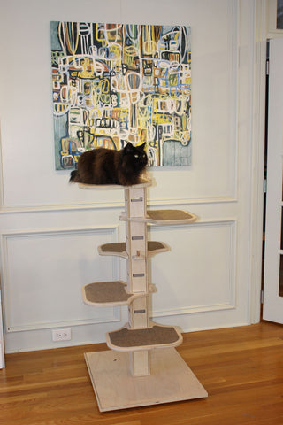 NEW Elevation Jr Free Standing Cat Tree Contempocat - What is our elevation