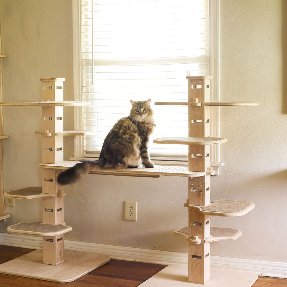Elevation Jr. Cat Tree