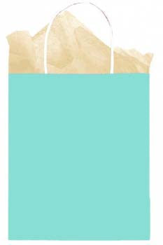 Robin's Egg Solid Kraft - Medium Tote bag