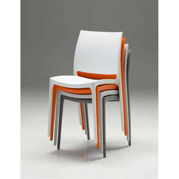 Tava Dining Chair