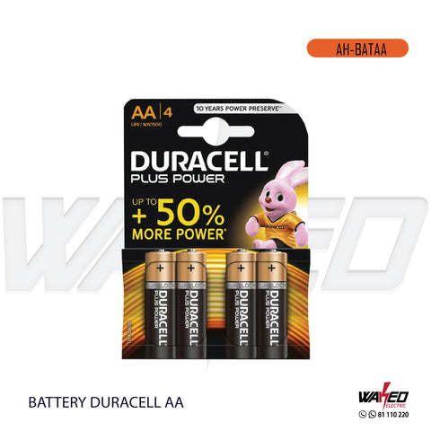Battery Duracell  - AA