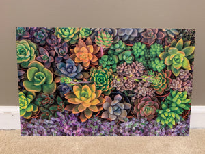 PatternPly Assorted Succulents