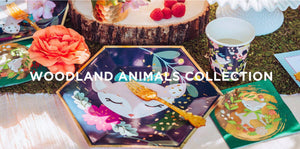 WOODLAND ANIMALS BIRTHDAY BOX