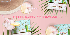 CACTUS LLAMA FIESTA PARTY IN A BOX - THE LUXE